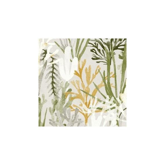 Algues Blanc