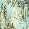 Algues Bleu