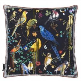 Birds Sinfonia Crepuscule