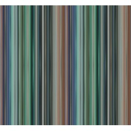 Riga Multicolore Verticale