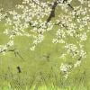 Les cerisiers sauvages Vert